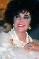 Elizabeth Taylor 1993<br /> Photo By John Barrett/PHOTOlink.net / MediaPunch