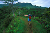 Hiking the Kuilau Ridge Trail.  Wailua, Kauai