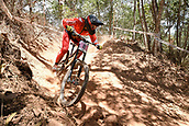7th September 2017, Smithfield Forest, Cairns, Australia; UCI Mountain Bike World Championships; Miranda Miller CAN)from SPECIALIZED GRAVITY during downhill practice