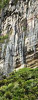 Punakaiki, Pancake Limestone Rocks, Woodpacker Bay, Charleston Photos