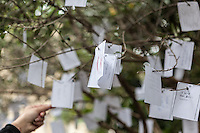 Yoko Ono's Wish Tree for Peggy Guggenheim at the Peggy Guggenheim Collection, Venice, Italy. Images are available for editorial licensing, either directly or through Gallery Stock. Some images are available for commercial licensing. Please contact lisa@lisacorsonphotography.com for more information.