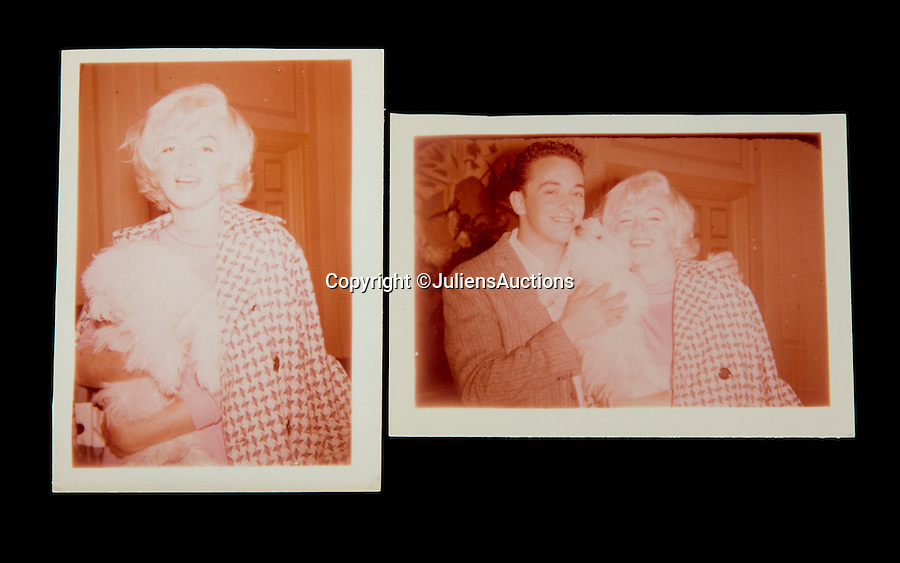 BNPS.co.uk (01202 558833)<br /> Pic: JuliensAuctions/BNPS<br /> <br /> A pair photographs of Marilyn Monroe with her dog Maf, one with superfan James Haspiel, taken on June 15, 1961, image of Monroe with Maf has never been seen before.<br /> <br /> A huge archive of candid photographs of screen siren Marilyn Monroe taken by a superfan she befriended has emerged for sale for a staggering £320,000.<br /> <br /> The collection includes more than 550 colour and black and white snaps, some of which have never been seen before, that were taken by fan-turned-friend Freda Hull.<br /> <br /> Monroe was notoriously guarded but welcomed Mrs Hull and her five friends into her inner sanctum, often giving them gifts and even once inviting them for a picnic at her home in Connecticut.<br /> <br /> The archive, which also boasts 150 colour slides, 750 stills from Monroe's films and a collection of personal home movies, is tipped to fetch £320,000 when it goes under the hammer at Julien's Auctions.