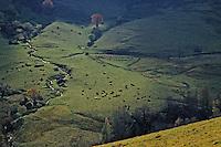 Europe/France/Auvergne/15/Cantal/Parc Régional des Volcans/Massif du Puy Mary (1787 mètres): Vallée de Dienne
