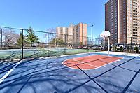 Basketball Court at 5900 Arlington Avenue