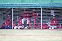 HS Baseball 2008 Nampa v Caldwell