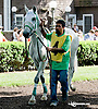 Sergeant Pepper MHF before The Arabian Diamond State at Delaware Park racetrack on 6/7/14