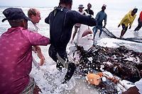 men release shark from fishing net,