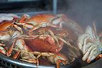 Fresh Dungeness Crab at Fisherman's Warf in San Francisco, CA, USA