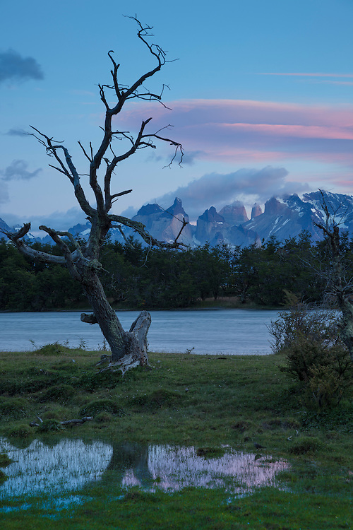 The Serrano River reflects early morning light striking the Tower of Paine in Torres del Paine NP, Chile