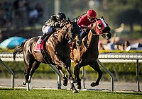 ARCADIA, CA - MARCH 11: Bal A Bali #1, ridden by Javier Castellano defeats What A View #7, ridden by Tyler Baze to win the Frank E. Kilroe Mile Stakes at Santa Anita Park on March 11, 2017 in Arcadia, California. (Photo by Alex Evers/Eclipse Sportswire/Getty Images)