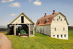 Pine Knoll Farms. Horse and cow barns.