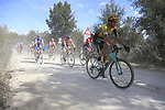 The peloton including Taco Van der Hoorn (NED) Team Jumbo-Visma on sector 3 Radi during Strade Bianche 2019 running 184km from Siena to Siena, held over the white gravel roads of Tuscany, Italy. 9th March 2019.<br /> Picture: Eoin Clarke | Cyclefile<br /> <br /> <br /> All photos usage must carry mandatory copyright credit (&copy; Cyclefile | Eoin Clarke)