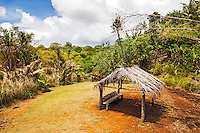 A jungle park on the island of Guam.