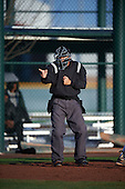 during the Under Armour All-American Pre-Season Tournament presented by Baseball Factory on January 14, 2017 at Sloan Park in Mesa, Arizona.  (Mike Janes/Mike Janes Photography)
