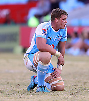 Hanro Liebenberg of the Vodacom Bulls during the Super Rugby match between the Vodacom Bulls and the Jaguares at Loftus Versfeld in Pretoria, South Africa on Saturday, 7 July 2018. Photo: Steve Haag / stevehaagsports.com