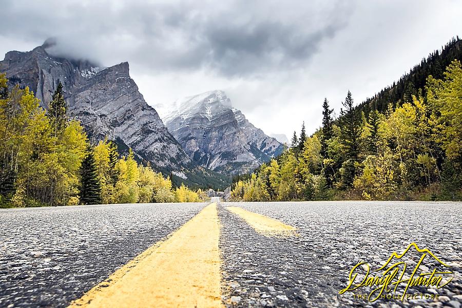Road, autumn, Kananaskis Country, Alberta, Canada