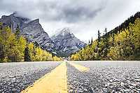 Road, autumn, Kananaskis Country, Alberta, Canada