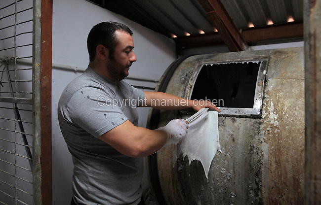 Nacho is removing a parchment from the tank with soap at the tannery factory of Scriptorium SL in Valencia, Spain. Picture by Manuel Cohen