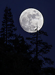 The full moon rises over Kingsbury Grade, near Minden, Nev., on Saturday, Jan. 3, 2015.<br /> Photo by Cathleen Allison