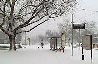 FREIBURG, ALEMANHA, 06 FEVEREIRO 2012 - FRIO EUROPA - Grande quantidade de neve é vista na tarde dessa segunda-feira na cidade de Freiburg na Alemanha onde os termometros registram -7 Graus . FOTO: MILENE PINHEIRO - NEWS FREE.