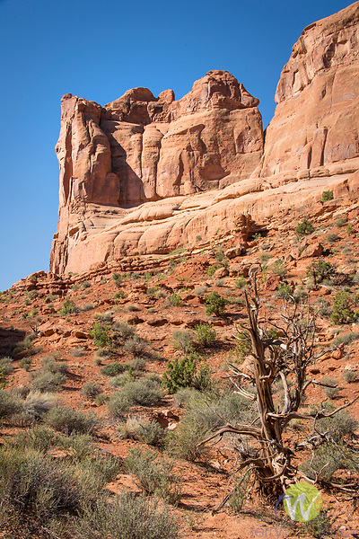 Arches National Park. Utah. 'Park Avenue'