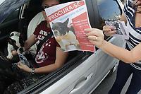 CAMPINAS, SP 10.08.2019 - CACHORRO PERDIDO - A busca pela bulldog francês Chanel está mobilizando cães farejadores, carro de som e até um drone na região do Jardim Chapadão, em Campinas (SP).<br /> Chanel, que tem 8 anos, desapareceu após fugir da clínica Veterinária Verlengia, onde estava internada na última terça-feira (6). Ela aguardava a realização de uma endoscopia porque estava vomitando muito.<br /> Um ato para reunir apoiadores da busca pela Chanel esta sendo neste sábado (10) na praça da Torre do Castelo. (Foto: Denny Cesare/Código19)