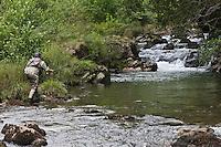 Europe/France/Aquitaine/64/Pyrénées-Atlantiques/Pays-Basque/Env de Estérençuby:  Apprentissage  de la pêche  à la mouche au fouet avec Yvon Zill,  Moniteur, Guide de  pêche  qui organise des stages de pêche sur les traces d'Ernest Hemingway   [Autorisation : 11002]
