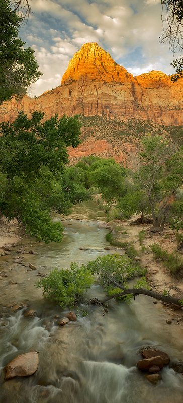 Virgin River and peak with cottonwood trees. Zion National Park, UT
