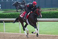 HOT SPRINGS, AR - April 14: Classic Empire gallops at Oaklawn Park on April 14, 2017 in Hot Springs, AR. (Photo by Ciara Bowen/Eclipse Sportswire/Getty Images)