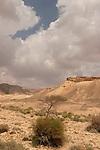 Israel, Wadi Gov in the Negev desert