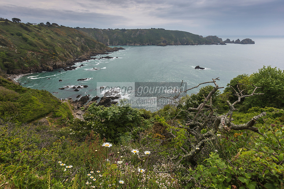 Royaume-Uni, îles Anglo-Normandes, île de Guernesey, Saint-Martin: Vue Sur La Baie Du Moulin Huet, un des sites peints par Renoir<br /> // United Kingdom, Channel Islands, Guernsey island, St-Martin : Moulin Huet Bay