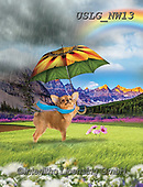 PAUL,REALISTIC ANIMALS, REALISTISCHE TIERE, ANIMALES REALISTICOS, paintings+++++NW_Umbrella-Dog-A,USLGNW13,#a#, EVERYDAY ,funny photos