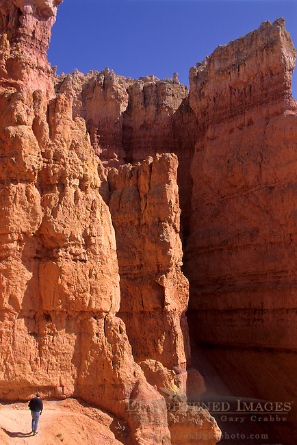 Hiking between Hoodoos within Bryce Canyon, Bryce Canyon National Park, UTAH