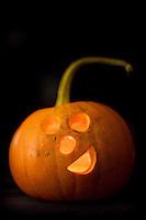 Halloween pumpkin carving in Seattle, Washington.