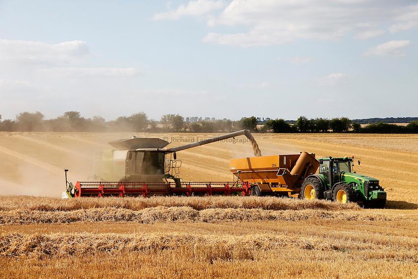Photo: Richard Lane/Richard Lane Photography. A Claas combine harvester cutting winter barley unloading into a chaser bin near Hindon, Wiltshire. 22/07/2014.