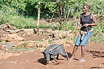 Licia Laguerre walks her pig in Picmy, a village on the Haitian island of La Gonave, where Service Chr&eacute;tien d&rsquo;Ha&iuml;ti is working with survivors of Hurricane Matthew, which struck the region in 2016. SCH is a member of the ACT Alliance. <br /> <br /> By loaning pigs to affected residents like Laguerre, families can raise the pigs, repay the loan with an offspring, and then continue benefiting from the animal. In Laguerre's case, selling piglets will help her pay children's school fees. She named the pig &quot;Mesi Bondye&quot; -- thanks to God.