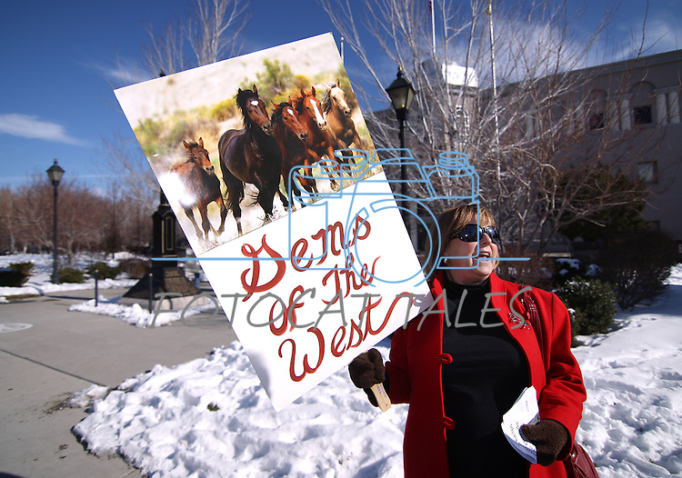 Terri Farley was among about 50 wild horse advocates rallied in front of the Legislature in Carson City on Friday in an effort to draw attention to next week's scheduled auction of 41 wild mustangs who supporters fear will end up at a slaughterhouse..Photo by Cathleen Allison