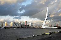 De Maas  en de Erasmusbrug in Rotterdam. De brug is ontworpen door Ben van Berkel