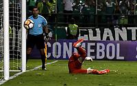 PALMIRA - COLOMBIA, 19-09-2018: Adrian Gabbarini, guardameta de Liga Deportiva Universitaria de Quito, no logra detener el disparo desde el tiro penal, durante partido entre Deportivo Cali (COL) y Liga Deportiva Universitaria de Quito (ECU), de los octavos de final, llave H, por la Copa Conmebol Sudamericana 2018, jugado en el estadio Deportivo Cali (Palmaseca) en la ciudad de Palmira. / Adrian Gabbarini, goalkeeper of Liga Deportiva Universitaria de Quito can´t stops the shot from the penalty kick,, during a match between Deportivo Cali (COL) and Liga Deportiva Universitaria de Quito (ECU), of eighth finals, key H, for the Copa Conmebol Sudamericana 2018, at the Deportivo Cali (Palmaseca) stadium in Palmira city. Photo: VizzorImage / Luis Ramirez / Staff.