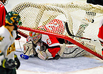 3 January 2009: St. Lawrence Saints' goaltender Kain Tisi, a Junior from Mississauga, Ontario, has the net fall over him in the third period against the University of Vermont Catamounts during the championship game of the Catamount Cup Ice Hockey Tournament at Gutterson Fieldhouse in Burlington, Vermont. The Cats defeated the Saints 4-0 and won the tournament for the second time since its inception in 2005...Mandatory Photo Credit: Ed Wolfstein Photo
