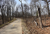 NWA Democrat-Gazette/FLIP PUTTHOFF<br />Trail of Two Cities meanders through woods, seen here Wednesday Feb. 14 2018, and urban areas in Bentonville and Rogers.