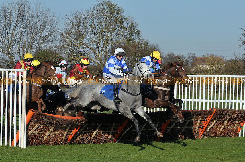 "Miss Hilton ridden by Andrew Thornton leads the field in the totequadpot E B F Mares´ ""National Hunt"" Novices´ Hurdle   at Huntingdon Racecourse, Brampton, Cambridgeshire - 19/11/2011 - MANDATORY CREDIT: Martin Dalton/TGSPHOTO - Self billing applies where appropriate - 0845 094 6026 - contact@tgsphoto.co.uk - NO UNPAID USE."