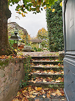 Autumn leaves gather on stone steps that lead up to a garden.