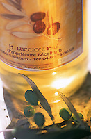 France/2A/Corse du Sud/Filitosa/Sollacaro: Huile d'Olive de Paul Luccioni producteur