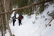 Pemigewasset Wilderness - Group of hikers travel along the Lincoln Brook Trail during the winter months in the White Mountains , New Hampshire USA