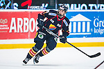 Stockholm 2013-12-28 Ishockey Hockeyallsvenskan Djurg&aring;rdens IF - Almtuna IS :  <br /> Djur&aring;grden Andreas Englund i aktion <br /> (Foto: Kenta J&ouml;nsson) Nyckelord:  portr&auml;tt portrait