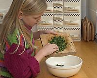 Mädchen, Kind verarbeitet Kräuter, Kräuter-Pfannkuchen mit Löwenzahn - Blättern und Gänseblümchen - Blüten, Zerkleinerte Blätter und Blüten werden in den Pfannkuchenteig gegeben, Taraxacum, Bellis perennis