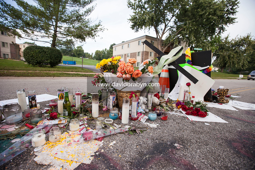 HSUL 20140819 United States, Ferguson, MO. Memorial to Michael Brown on Canfield Drive in Ferguson, MO, on August 19, 2014, at the spot where he was killed. Photographer: David Brabyn