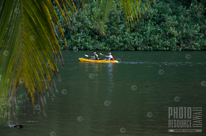 Kayakers on the Wailua River, Kauai.