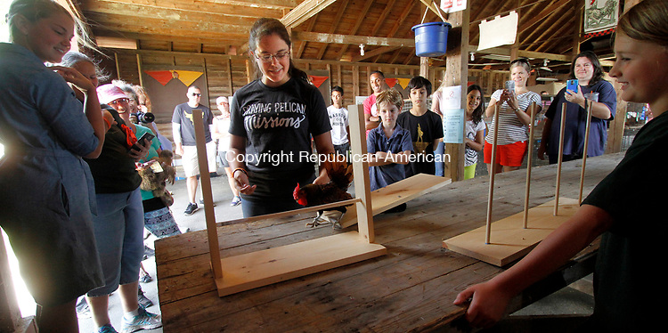 GOSHEN, CT - 30 JULY 2017 - 073017JW02.jpg -- Ruth Swartzfager attempts to coax her chicken through the obstacle course Sunday afternoon during the Annual 4-H Fair.  Jonathan Wilcox Republican-American